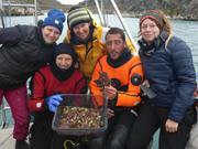 Belle collecte de coralline