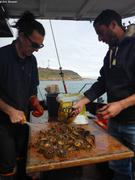 Philippe et Louis preparent les oursins