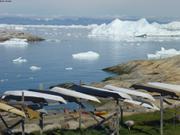 Kayaks Ilulissat