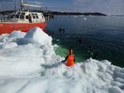 Escale banquise pres d Ilulissat