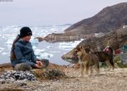 Leonie et chiots a Nussuaq