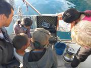 Observation avec camera sous-marine a Savissivik