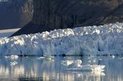 Glacier qui surge fiord du Cap Sud