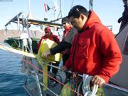 Formation rapide oceanographie avec Rangers de Grise Fiord