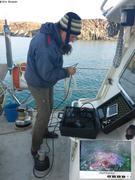 France recherche coralline pres de Grise Fiord