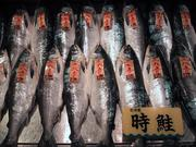 Marche poissons Kushiro