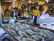 Marche poissons Onahama