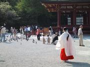 Religieuse Kamakura