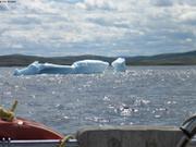Iceberg du Labrador