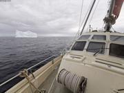 Icebergs Terre Neuve