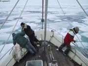 Glaces de Larsen Sound