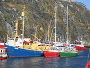 Vagabond Nuuk