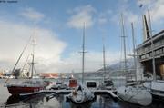 Vagabond Tromso Marina