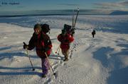 Sur glacier Inglefield3