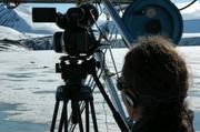 Filmer les phoques