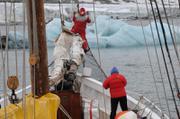 Iceberg devant Albarquel