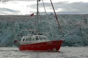 Vagabond devant le glacier Bore