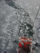 Briser la glace2