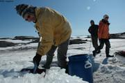 464ter Piem collecte glace