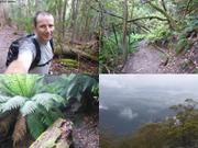 Mont Wellington sous la pluie